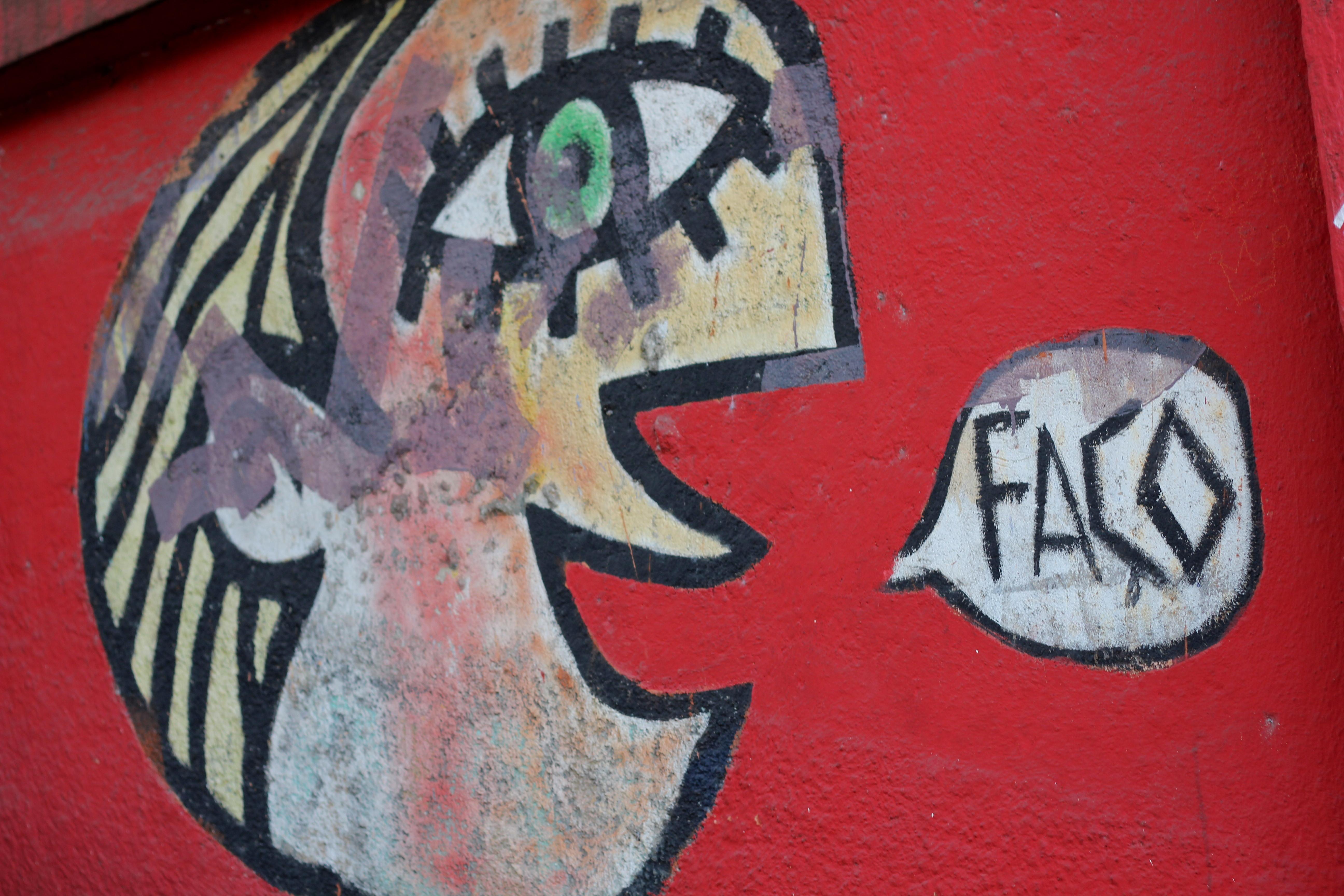São Paulo's Street Art 57